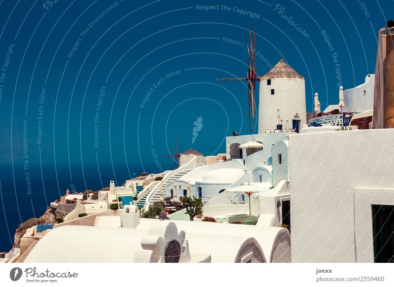 Idyllic white houses on Santorini with windmills in front of blue sky Windmill Summer Vacation & Travel Beautiful weather Oia Colour photo Greece Exterior shot