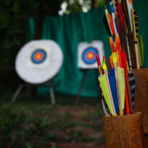 Choose your target Sports Blue Brown Multicoloured Yellow Green Red Black White Archery Target 2 Arrow Feather Catching net Woodground Ambitious Pipe Tree
