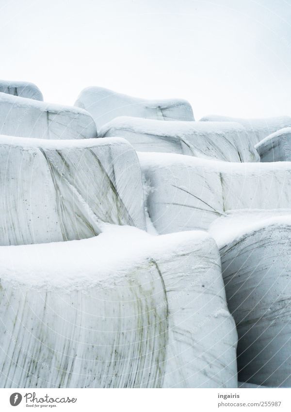 Sky Blue White Winter Black Snow Gray Ice Frost Threat Hill Plastic Agriculture Forestry Feed Packaging