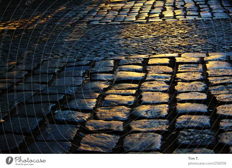 chestnut avenue Berlin Prenzlauer Berg Town Downtown Old town Deserted Cobblestones Sidewalk Colour photo Exterior shot Evening Twilight