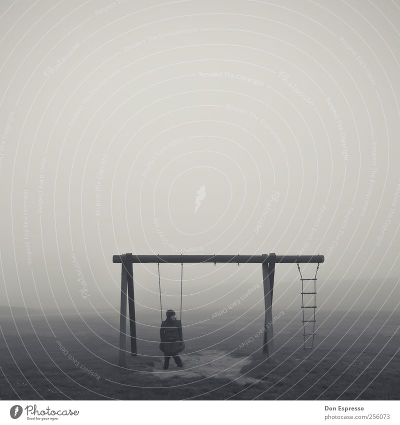 Quiet. Woman Adults 1 Human being Autumn Bad weather Fog Think Relaxation To swing Sit Playing Dream Sadness Retro Gloomy Emotions Moody Patient Calm Grief