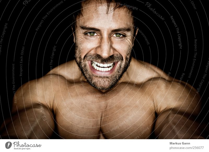 muscleman Sports Fitness Sports Training Sportsperson Human being Masculine Man Adults Face Chest 1 Facial hair Aggression Athletic Threat Power Bodybuilder