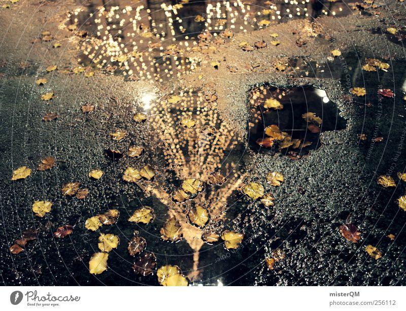 Christmas NY IV Art Esthetic Christmas & Advent December Christmas tree Lighting Surface of water Anticipation Fir tree Asphalt Street Colour photo