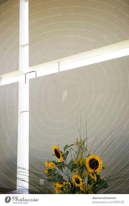 Window Wall (building) Religion and faith Wall (barrier) Interior design Modern Church Sign Crucifix Bouquet Sunflower