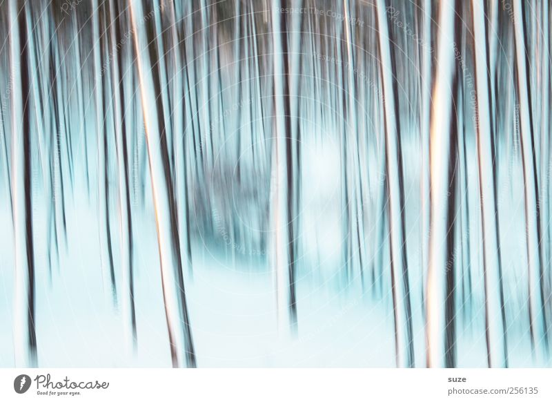 Nature Blue White Tree Loneliness Landscape Winter Forest Cold Movement Emotions Snow Background picture Exceptional Line Art