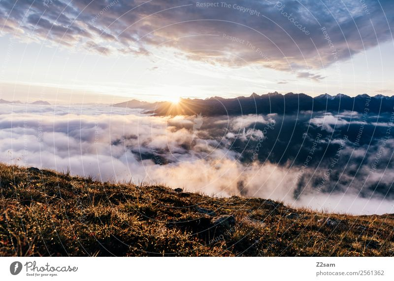 Sunrise | Pitztal Adventure Mountain Environment Nature Landscape Sky Clouds Sunset Sunlight Summer Beautiful weather Fog Alps Peak Exceptional Gigantic