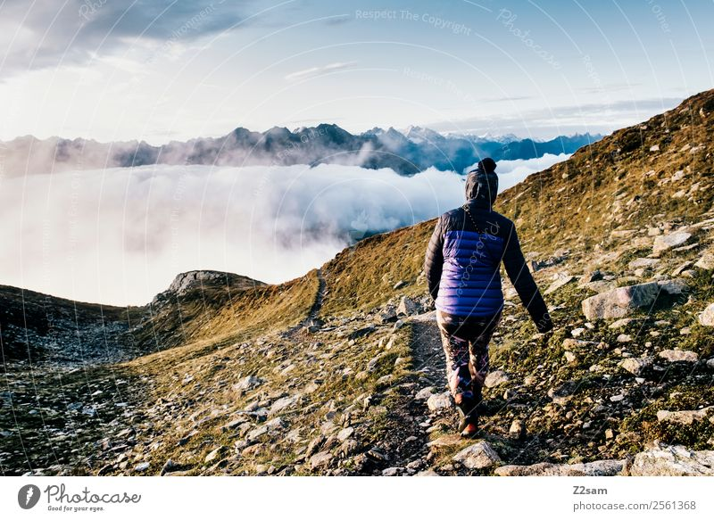 Descent | Summit | Alps | Morning Mountain Hiking Feasts & Celebrations Young woman Youth (Young adults) 30 - 45 years Adults Nature Landscape Sky Clouds