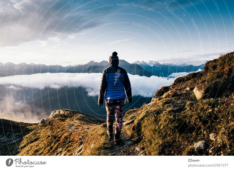 Hiking | Sunrise | Summit Mountain Feasts & Celebrations Young woman Youth (Young adults) 18 - 30 years Adults Nature Landscape Sky Clouds Summer Alps Peak