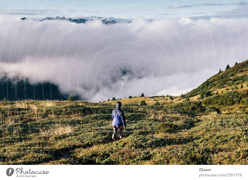 Hiking | Austria | Above the clouds Vacation & Travel Adventure Freedom Mountain Young woman Youth (Young adults) 30 - 45 years Adults Nature Sky Clouds Summer