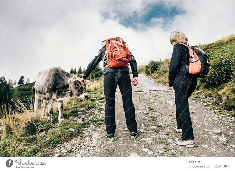 Woman Human being Sky Nature Vacation & Travel Man Landscape Clouds Mountain Senior citizen Natural Lanes & trails Feasts & Celebrations Couple Trip