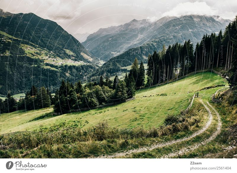 Pitztal Alps | Wenns Mountain Hiking Nature Landscape Summer Beautiful weather Forest Village Esthetic Fresh Sustainability Natural Green Loneliness Relaxation