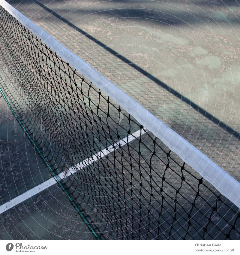 T-line Leisure and hobbies Playing Vacation & Travel Sports Ball sports Sporting Complex Sporting event Green Tennis Net Tennis tournament Diagonal Square White