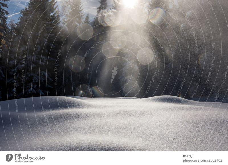 Calm Winter Life Snow Illuminate Round Harmonious Smooth Snow layer