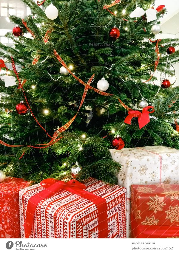 Christmas & Advent Beautiful Red Calm Joy Love Happy Feasts & Celebrations Living or residing Flat (apartment) Elegant Happiness Gift Wait Large Simple