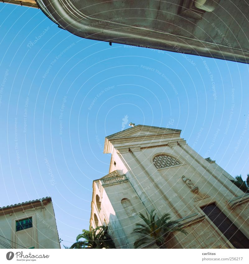 Church of Saint Titanic Cloudless sky Old Portal arched windows Capital of a pillar Palm tree Mediterranean Ses Salines Majorca Vacation & Travel Tilt