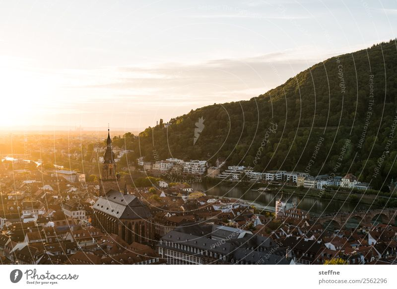 View of the old town of Heidelberg at sunset Clouds Sunrise Sunset Sunlight Summer Beautiful weather Forest Hill Old town Church Idyll Calm Religion and faith
