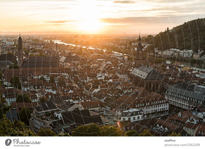 View of the old town of Heidelberg at sunset Sky Sunrise Sunset Sunlight Summer Beautiful weather Old town Church Idyll Romance Religion and faith Colour photo