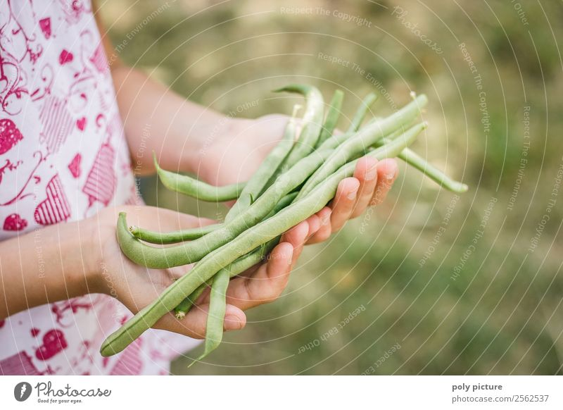 Child Nature Vacation & Travel Youth (Young adults) Young woman Summer Green Hand Joy Girl Autumn Garden Playing Leisure and hobbies Infancy Arm