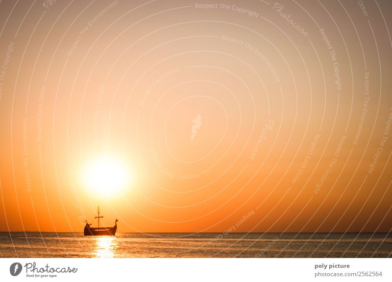 Viking ship at sea in the evening sun Harmonious Well-being Vacation & Travel Tourism Trip Adventure Far-off places Freedom Summer Summer vacation Sun Spring