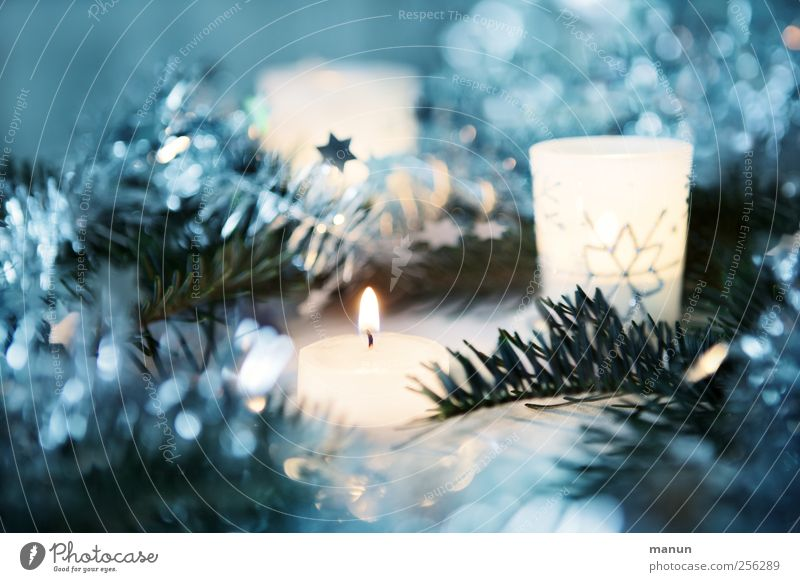 Christmas & Advent Blue White Beautiful Cold Moody Glittering Authentic Star (Symbol) Illuminate Decoration Candle Kitsch Silver Anticipation