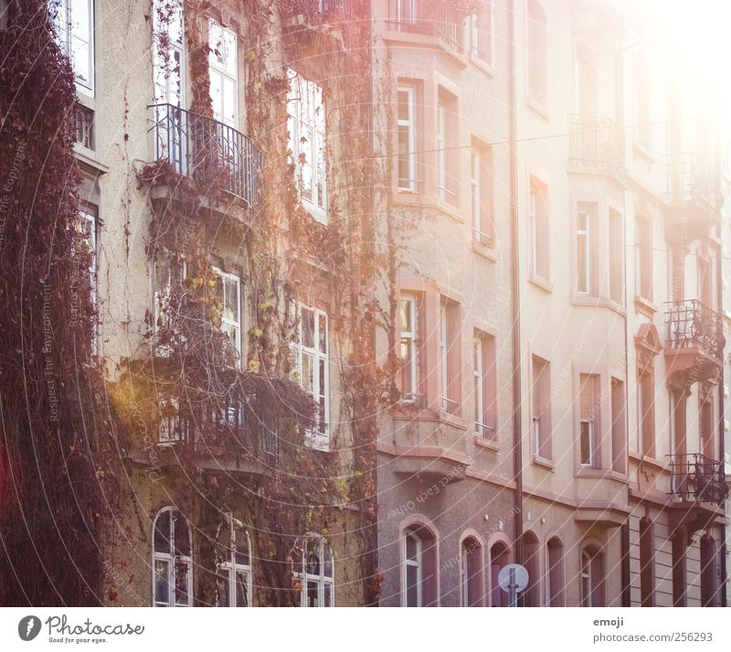City House (Residential Structure) Autumn Window Wall (building) Wall (barrier) Pink Facade Detached house