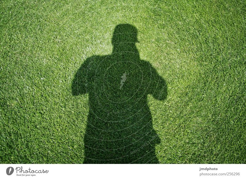 Shadow Meadows Man Lifestyle Human being Masculine 1 Plant Summer Garden Observe Think Discover Green Dark side Shade plant Grass surface Silhouette