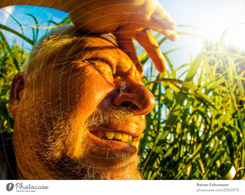 a man looks into the sunlight in a very hot place Human being Masculine Man Adults Male senior Head 1 Environment Nature Sky Sun Sunlight Summer Climate