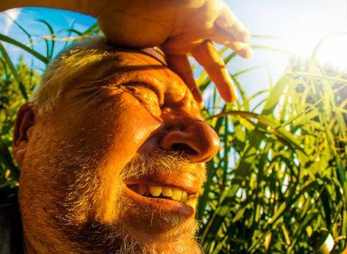 Human being Sky Nature Man Summer Plant Sun Adults Warmth Environment Grass Head Masculine Weather Beautiful weather Bushes