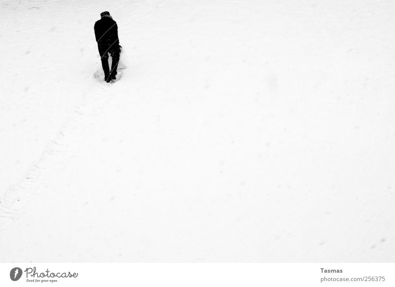 Human being Man White Joy Black Adults Snow Playing Snowfall Masculine Joie de vivre (Vitality) Build Enthusiasm Roll Black & white photo Bad weather
