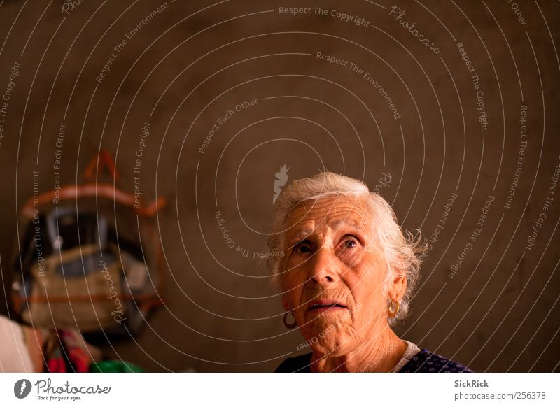 Woman Human being Old Adults To talk Senior citizen Warmth Think Brown Observe Wrinkle Farmer Ring 60 years and older Female senior Honest