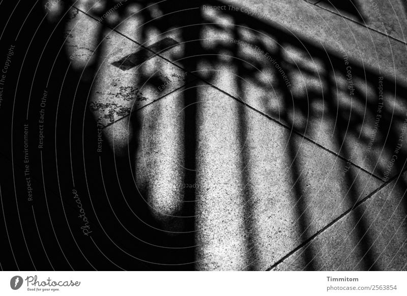 I want you to leave this place behind me. Town Sidewalk Fence Stone Line Dark Gray Black Emotions Going Shadow Paving tiles Black & white photo Hold Boundary