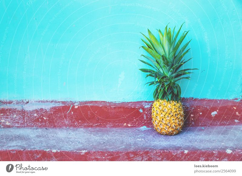 Large Pineapple on turquoise wall and red floor Fruit Organic produce Vegetarian diet Vacation & Travel Tourism Far-off places Summer Sun Nature