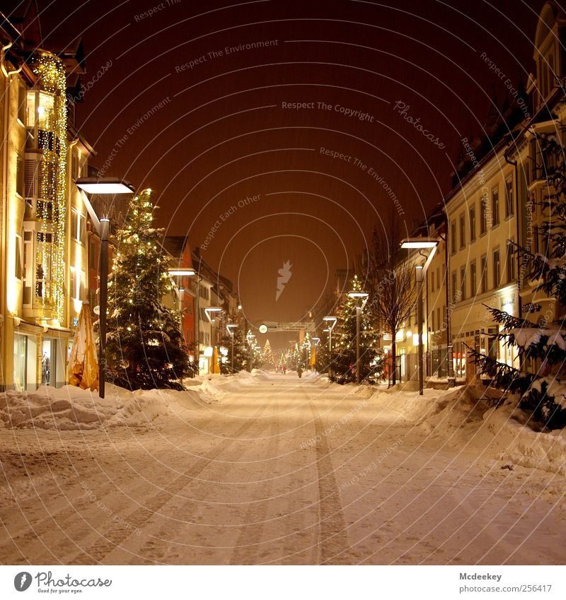 Christmas magic Winter Snow Plant Tree Fir tree Villingen Germany Europe Downtown Old town Pedestrian precinct Deserted House (Residential Structure)