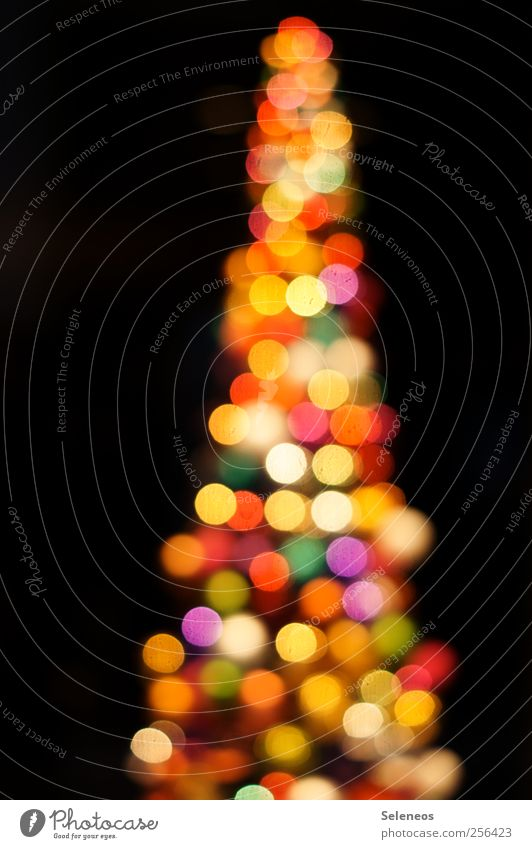 glittering tree Night life Feasts & Celebrations Christmas & Advent Tree Sphere Glittering Happiness Kitsch Round Crazy Trashy Blur Colour photo Deserted