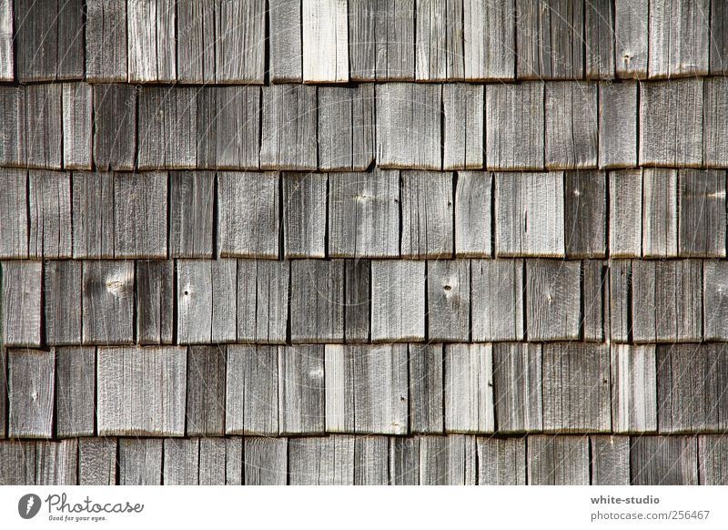 Weathered wood shingles in the Chiemgau mountains Mountain Hiking Alps Hut Facade Roof Roofing tile Wood Old Historic Brown Gray Transience Time Shingle