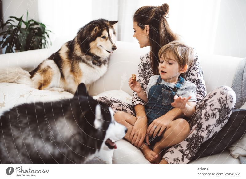 mother and son enjoying time with their husky at home Woman Child Human being Dog Beautiful Lifestyle Adults Love Family & Relations Laughter Happy Boy (child)