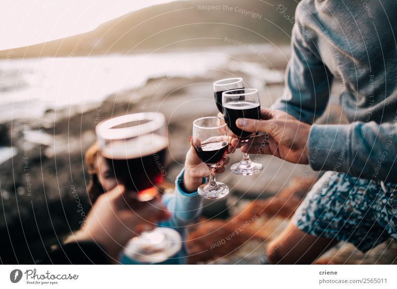 group of friends drinking wine at coast Joy Relaxation Summer Sun Beach Woman Adults Man Friendship Couple Sand Coast Smiling Together Red Quality people picnic