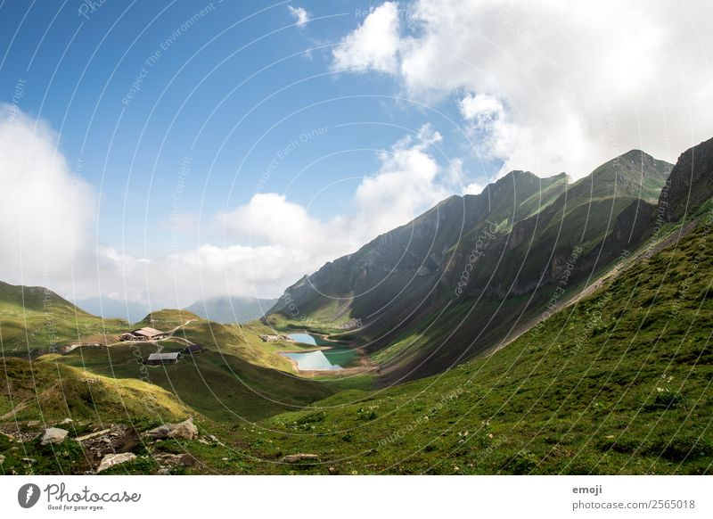 ice lake Environment Nature Landscape Sky Summer Beautiful weather Meadow Alps Mountain Lake Natural Blue Green Mountain lake Switzerland Brienzer Rothorn
