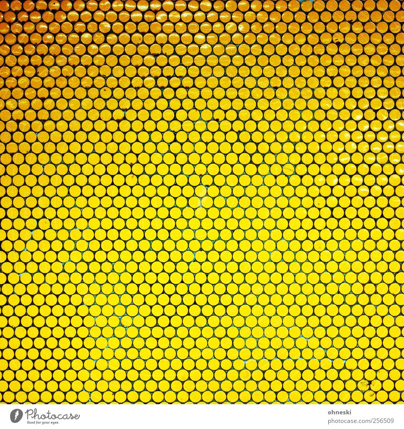 Small circles Deserted Manmade structures Wall (barrier) Wall (building) Tile Mosaic Many Yellow Gold Flashy Point Colour photo Interior shot Abstract Pattern