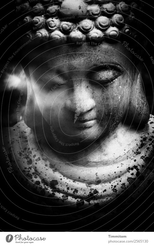 Buddha figure Figure Gray Black White Emotions Contentment Acceptance Serene Calm Black & white photo Statue of Buddha Buddhism Exterior shot Deserted Day Light