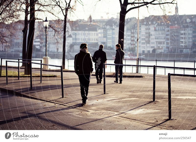 Men Masculine Man Adults Father Brothers and sisters 3 Human being Cool (slang) Generation Winter Avenue Pedestrian Leisure and hobbies Going To go for a walk