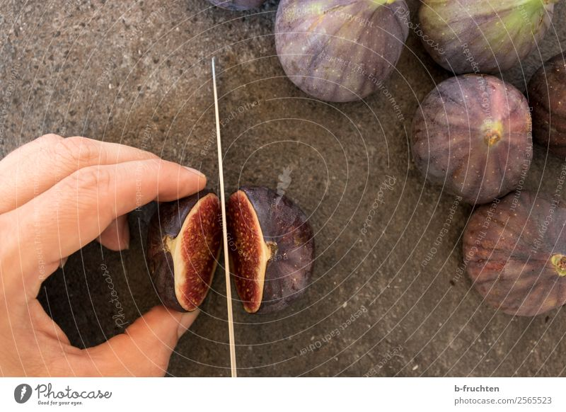 Cutting open a fig Food Fruit Vegetarian diet Slow food Knives Healthy Eating Man Adults Hand Fingers 30 - 45 years Stone To hold on cut Cooking Fig worktop