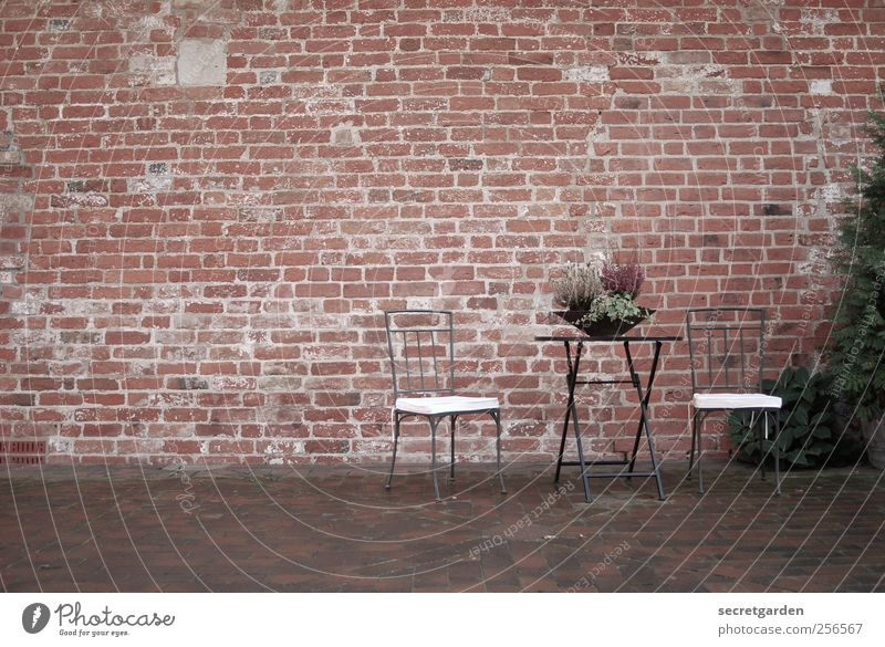 Nature White Beautiful Red Vacation & Travel Loneliness Relaxation Autumn Wall (building) Garden Happy Building Wall (barrier) Brown Facade Table