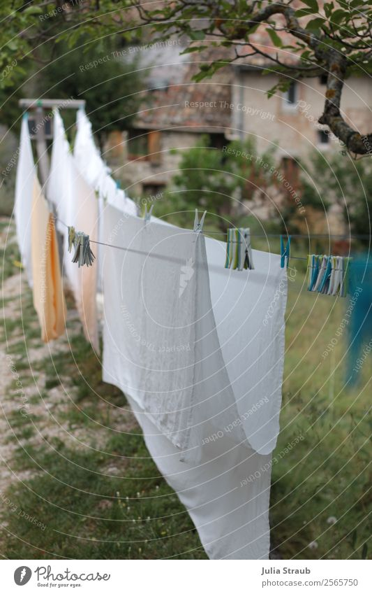 Clothes staple Line Village House (Residential Structure) Window Idyll Living or residing Provence Clothes peg Clothesline Sheet White Tree Meadow Colour photo