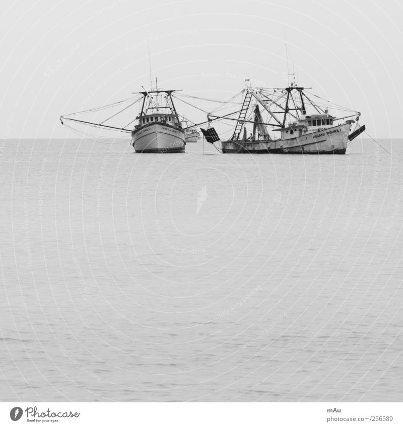 Fished Fishing boat Catch Hunting Brazil Fishing (Angle) Net Black & white photo Exterior shot Deserted Day Contrast
