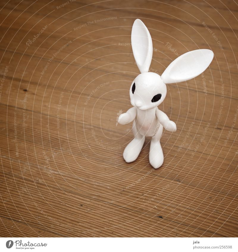 follow the white rabbit Children's game Decoration Easter Animal Hare & Rabbit & Bunny Kitsch Odds and ends White Figure Parquet floor Wooden floor Colour photo