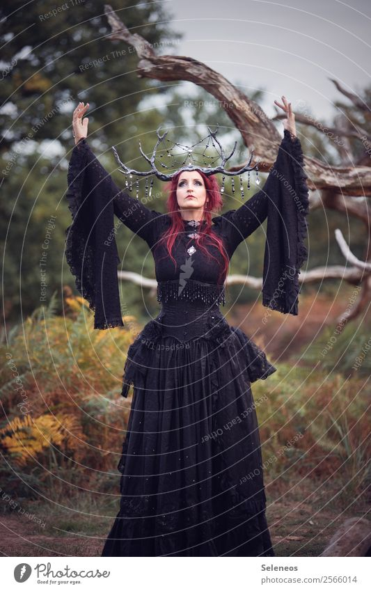 There should be more Fridays! Human being Feminine Woman Adults 1 Autumn Forest Dress Accessory Jewellery Romance conjure Antlers Branchage Lace Gothic style
