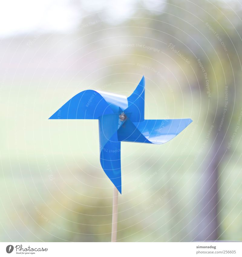 still wind Decoration Broken Blue Pinwheel Plastic Calm Motionless Toys All-weather Colour photo Exterior shot Close-up Deserted Copy Space top