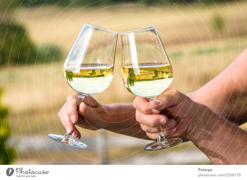 Wine glasses with reflections of beautiful nature Lunch Dinner Beverage Drinking Alcoholic drinks Lifestyle Luxury Joy Happy Leisure and hobbies Summer Sun