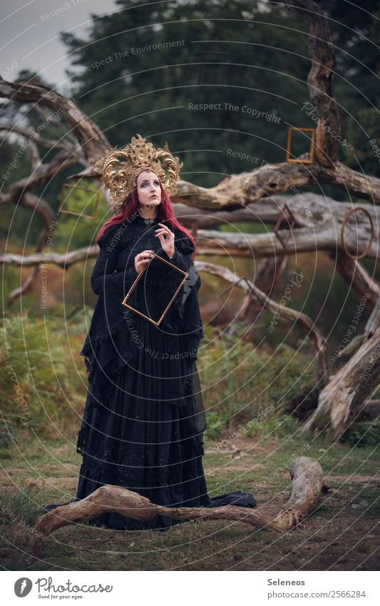 painting pictures Human being Feminine Woman Adults 1 Environment Nature Autumn Tree Branchage Park Field Forest Dress Headdress Red-haired Long-haired Dream